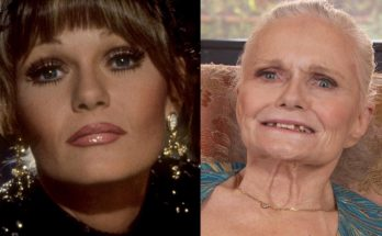 Valerie Perrine Quotes, Bra Size, Breasts, Biography, Height